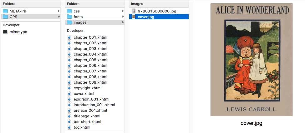 Screenshot of the images folder in an EPUB