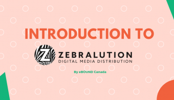 Intro to Zebralution