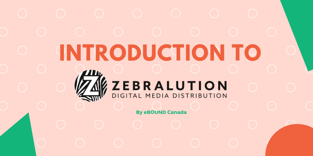 Intro to Zebralution